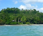 matapalo-surf-trips