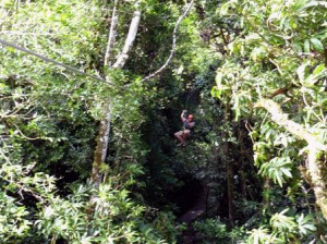 Zip-Lining in Golfito