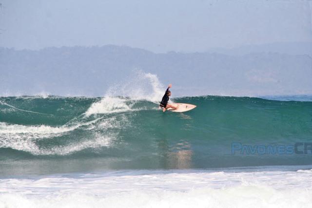 Pavones Surf