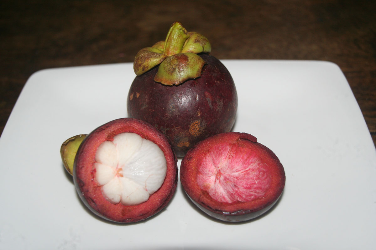 Tropical Fruits in Costa Rica