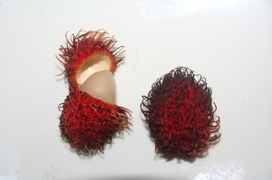 Rambutan - Exotic Fruit in Pavones, Costa Rica